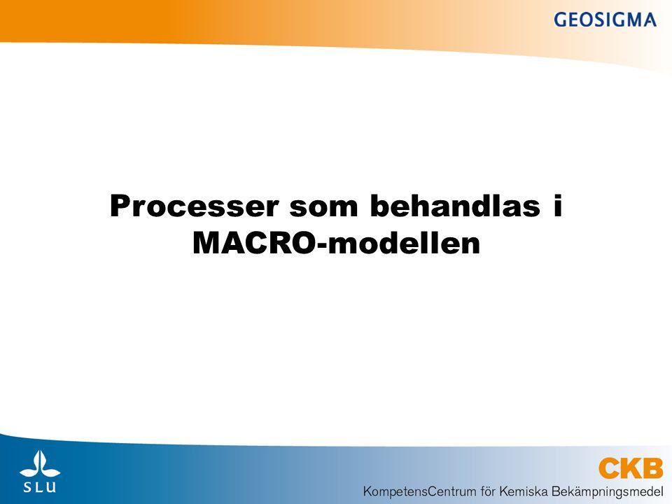 Processer som behandlas i MACRO-modellen