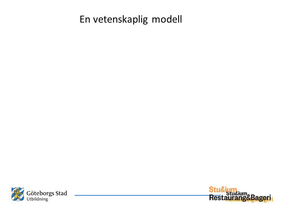 En vetenskaplig modell
