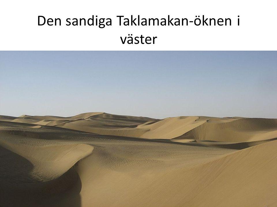 Den sandiga Taklamakan-öknen i väster