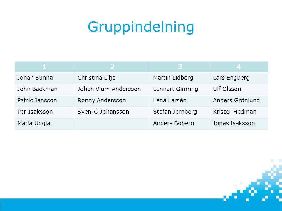 Gruppindelning 1 2 3 4 Johan Sunna Christina Lilje Martin Lidberg