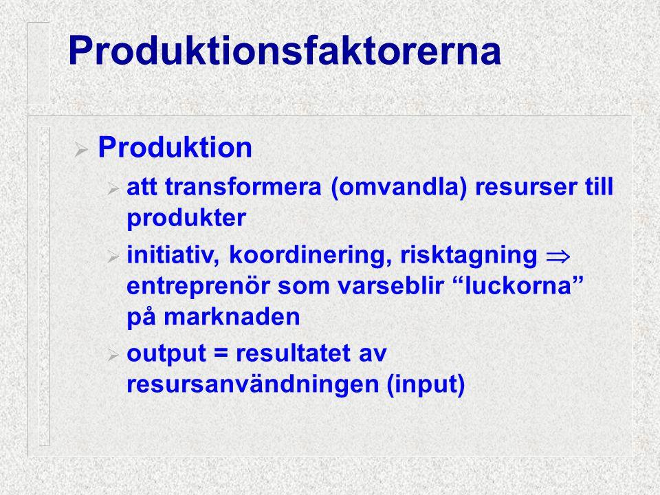 Produktionsfaktorerna