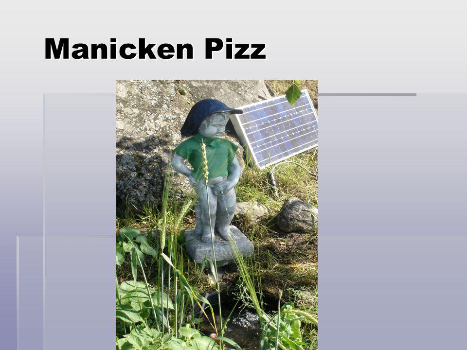 Manicken Pizz