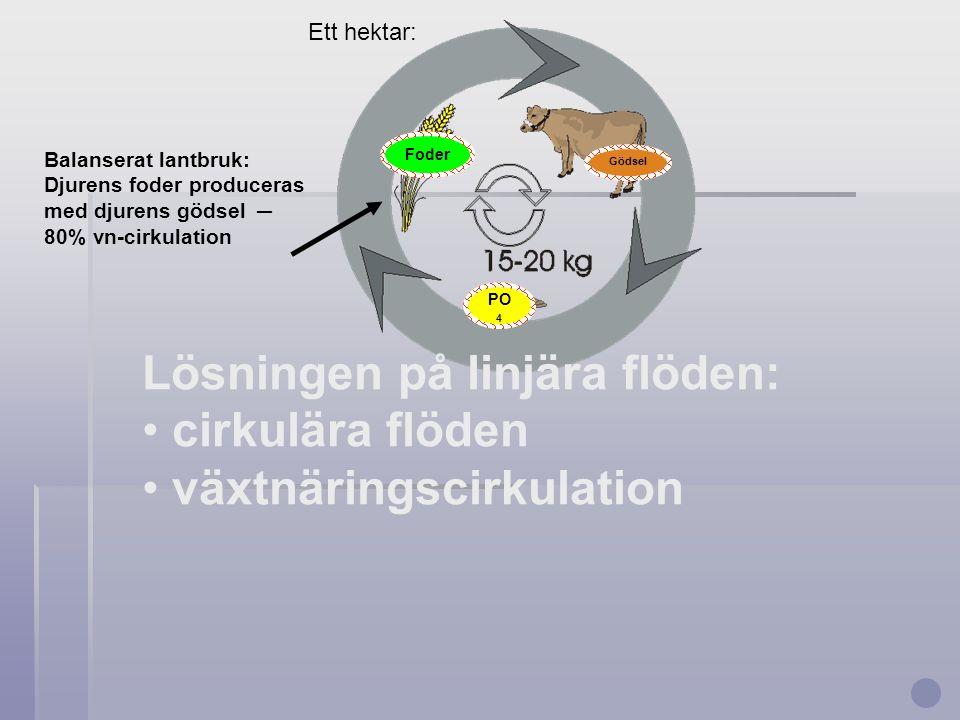 Lösningen på linjära flöden: cirkulära flöden växtnäringscirkulation