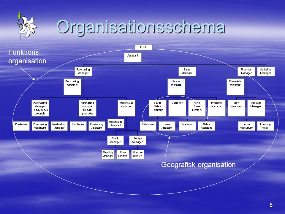 Organisationsschema Funktions- organisation Geografisk organisation