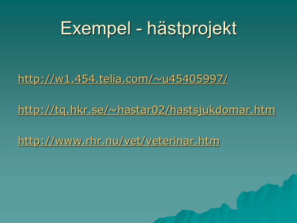 Exempel - hästprojekt http://w1.454.telia.com/~u45405997/
