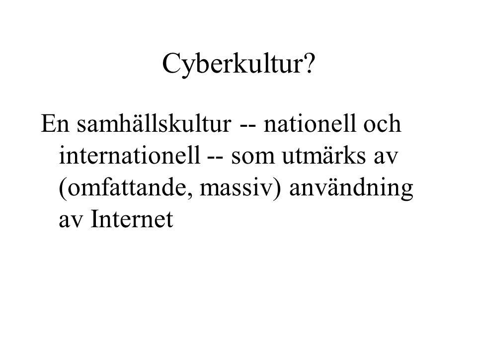 Cyberkultur.
