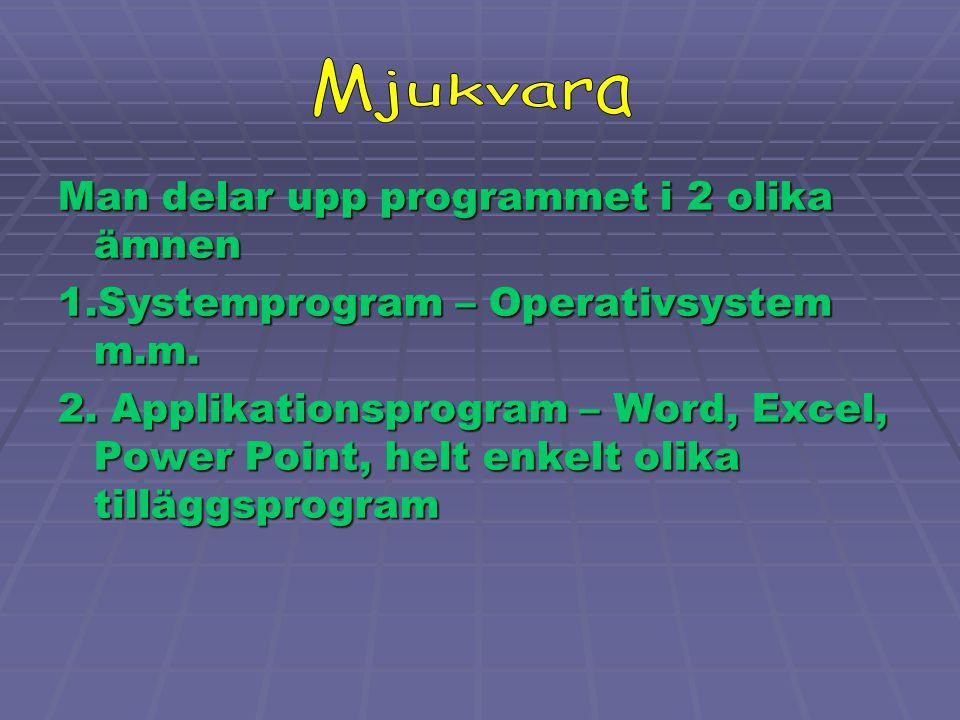 Mjukvara Man delar upp programmet i 2 olika ämnen