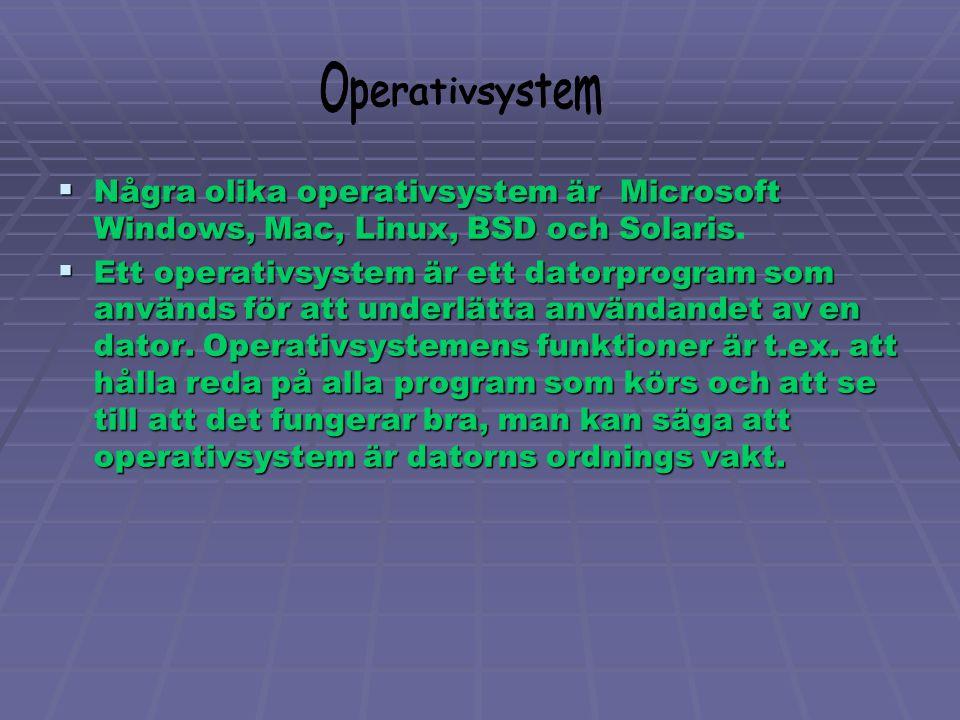 Operativsystem Några olika operativsystem är Microsoft Windows, Mac, Linux, BSD och Solaris.