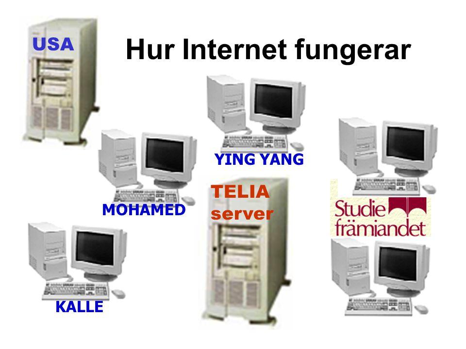 Hur Internet fungerar USA YING YANG TELIA server MOHAMED KALLE