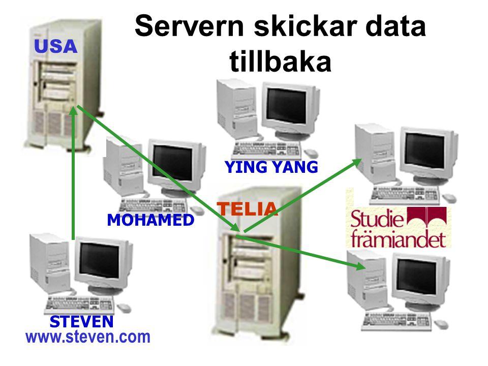 Servern skickar data tillbaka