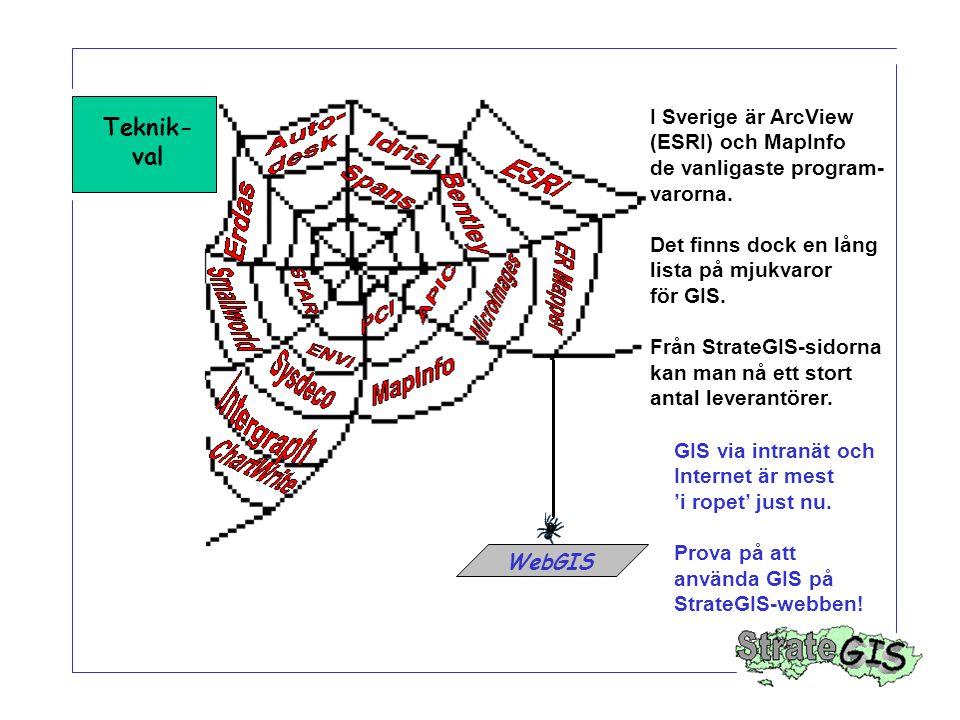 Teknik- val I Sverige är ArcView (ESRI) och MapInfo