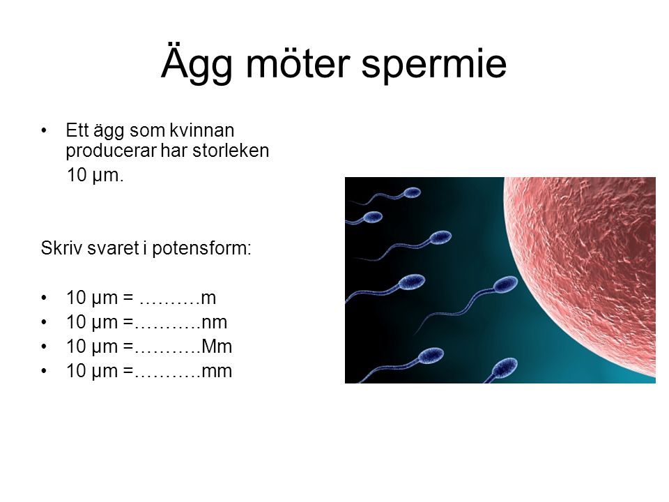 Ägg möter spermie Ett ägg som kvinnan producerar har storleken 10 μm.