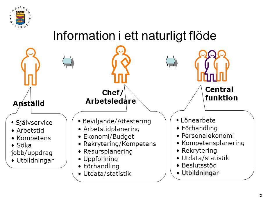 Information i ett naturligt flöde