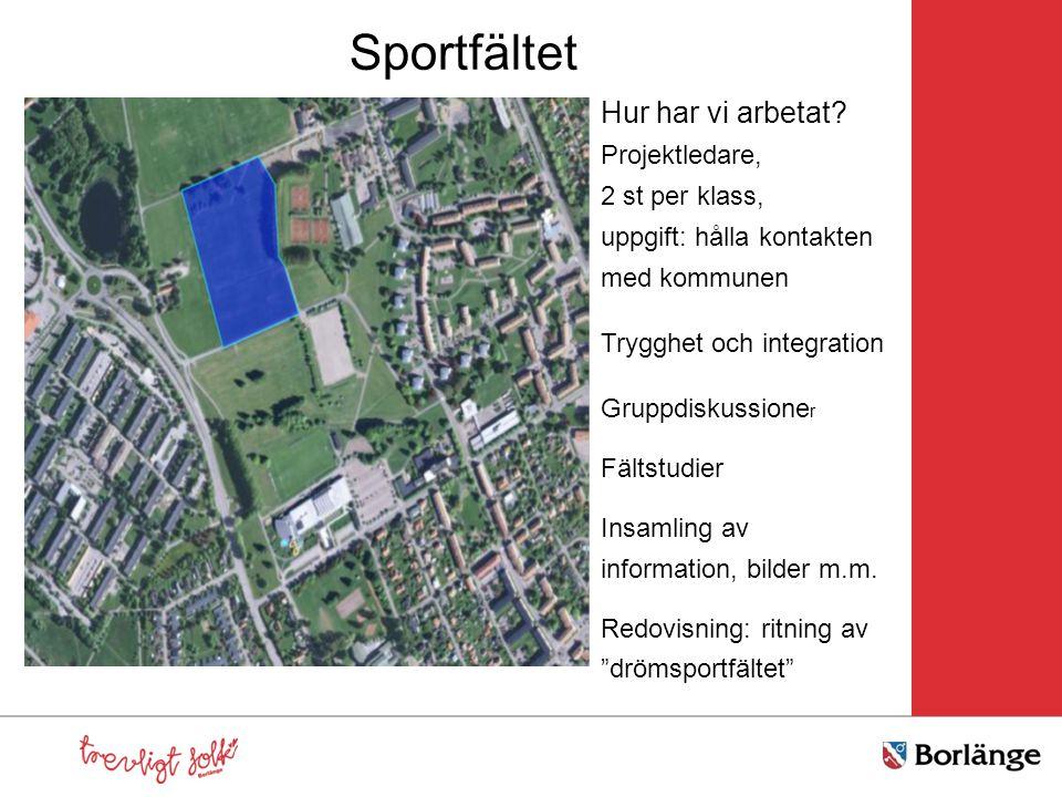 Sportfältet Hur har vi arbetat Projektledare, 2 st per klass,