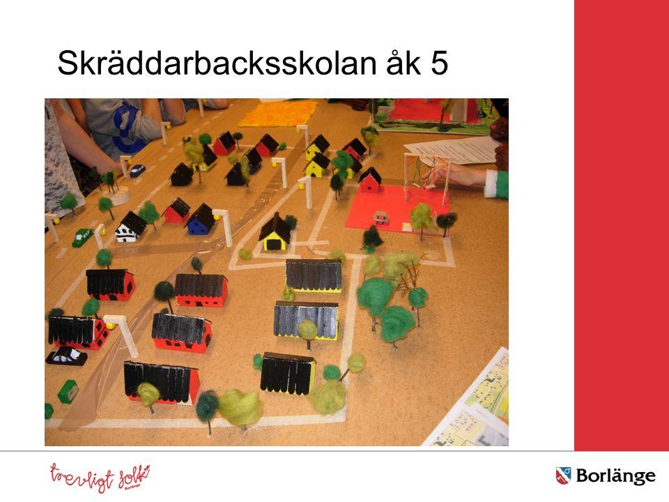 Skräddarbacksskolan åk 5