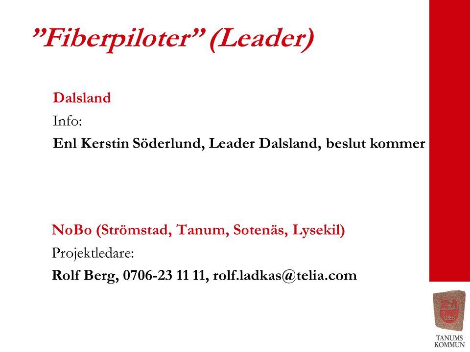 Fiberpiloter (Leader)
