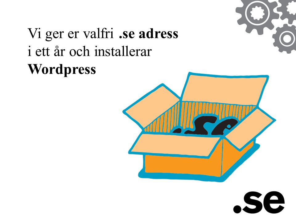 Vi ger er valfri .se adress i ett år och installerar Wordpress