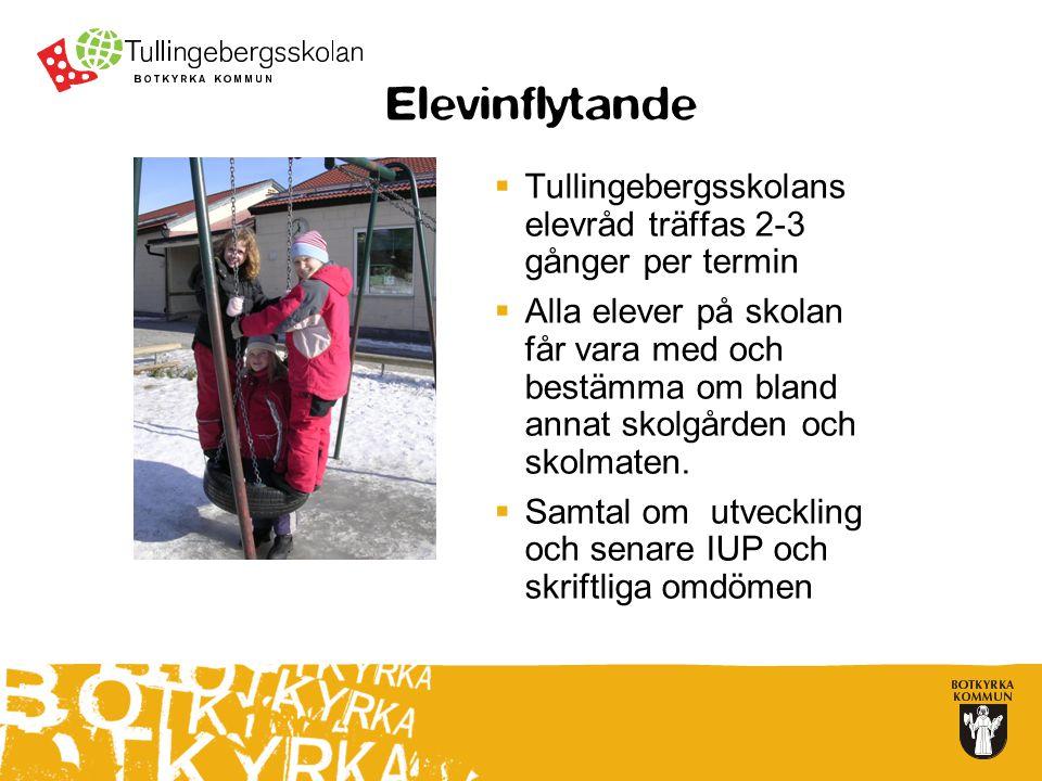 Elevinflytande Tullingebergsskolans elevråd träffas 2-3 gånger per termin.