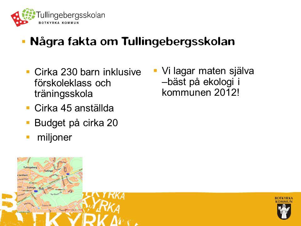 Några fakta om Tullingebergsskolan