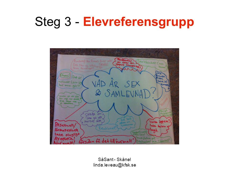 Steg 3 - Elevreferensgrupp