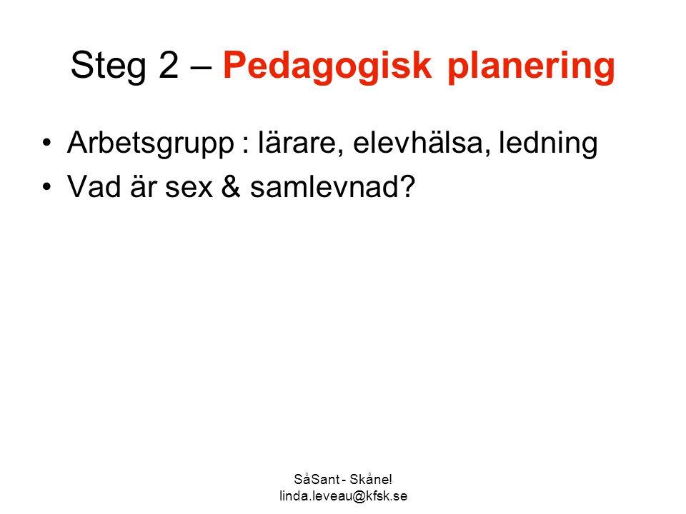 Steg 2 – Pedagogisk planering