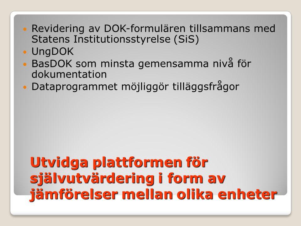 Revidering av DOK-formulären tillsammans med Statens Institutionsstyrelse (SiS)