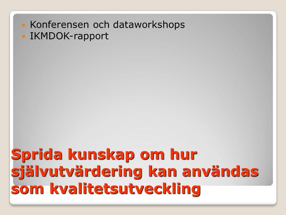 Konferensen och dataworkshops