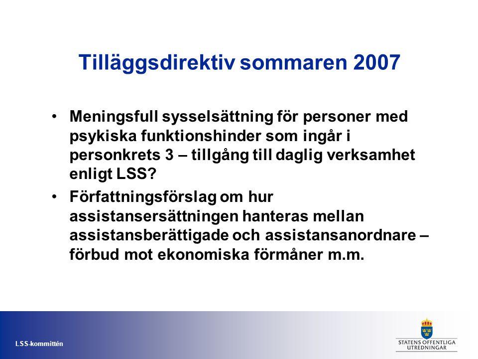 Tilläggsdirektiv sommaren 2007