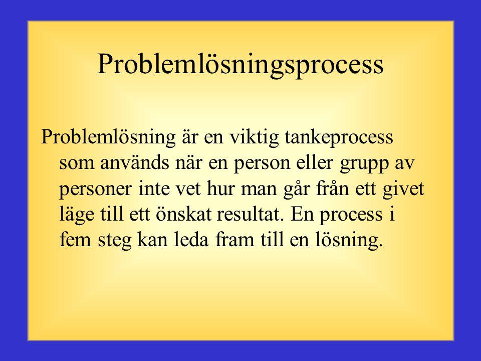 Problemlösningsprocess