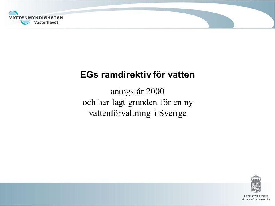 EGs ramdirektiv för vatten