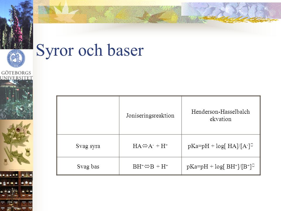 Syror och baser Joniseringsreaktion Henderson-Hasselbalch ekvation