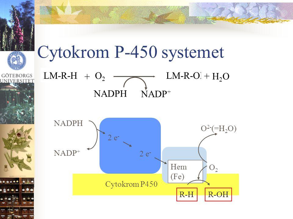 Cytokrom P-450 systemet NADPH NADP+ O2 LM-R-H + H2O LM-R-OH NADPH