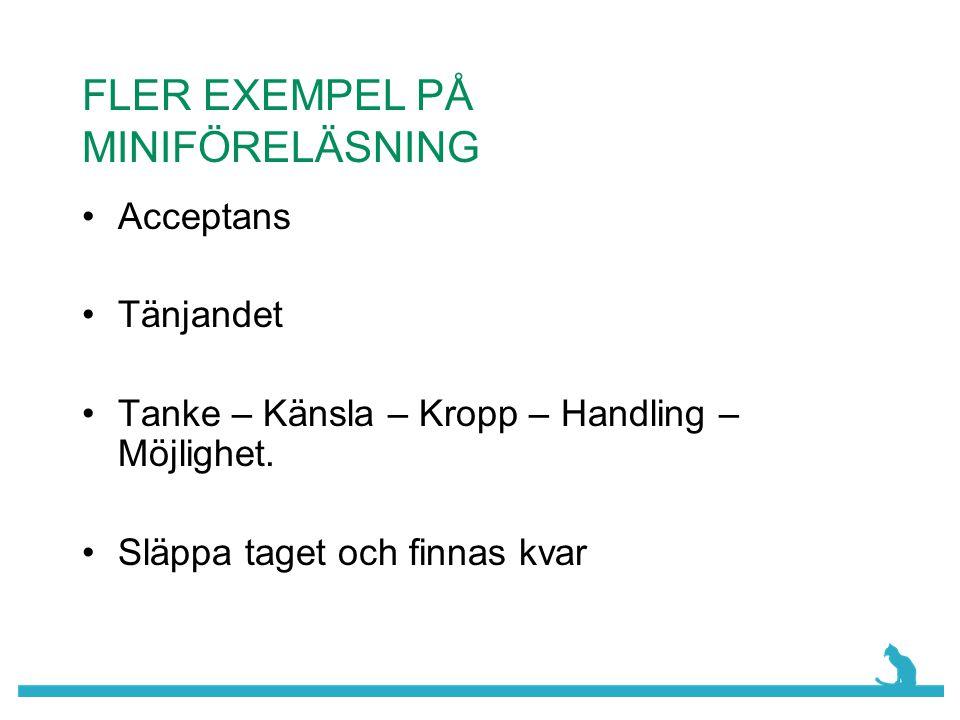 FLER EXEMPEL PÅ MINIFÖRELÄSNING