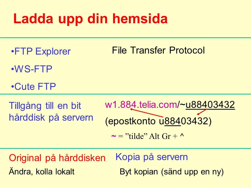 Ladda upp din hemsida FTP Explorer WS-FTP Cute FTP