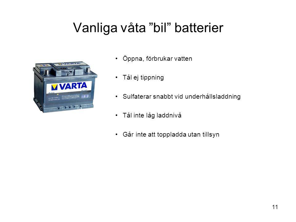 Vanliga våta bil batterier
