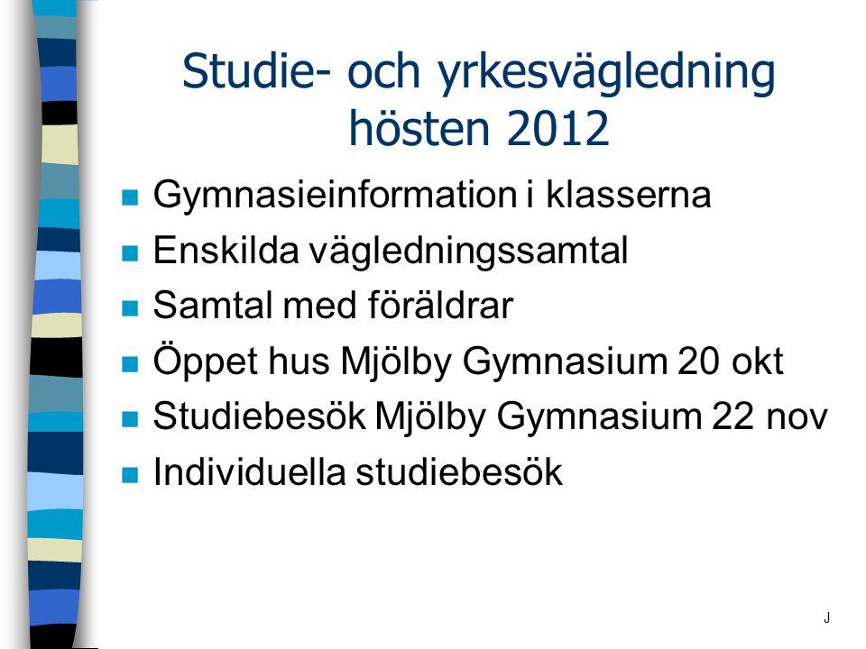 Studie- och yrkesvägledning hösten 2012