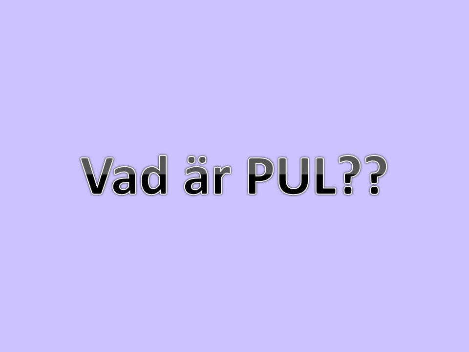 Vad är PUL