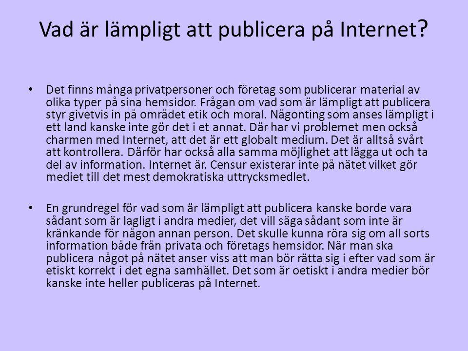 Vad är lämpligt att publicera på Internet