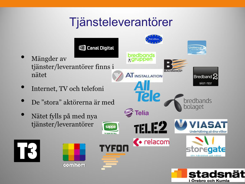 Tjänsteleverantörer Mängder av tjänster/leverantörer finns i nätet