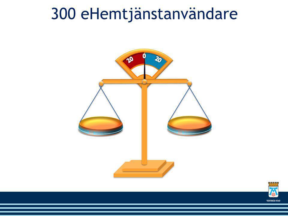 300 eHemtjänstanvändare 20 0 20