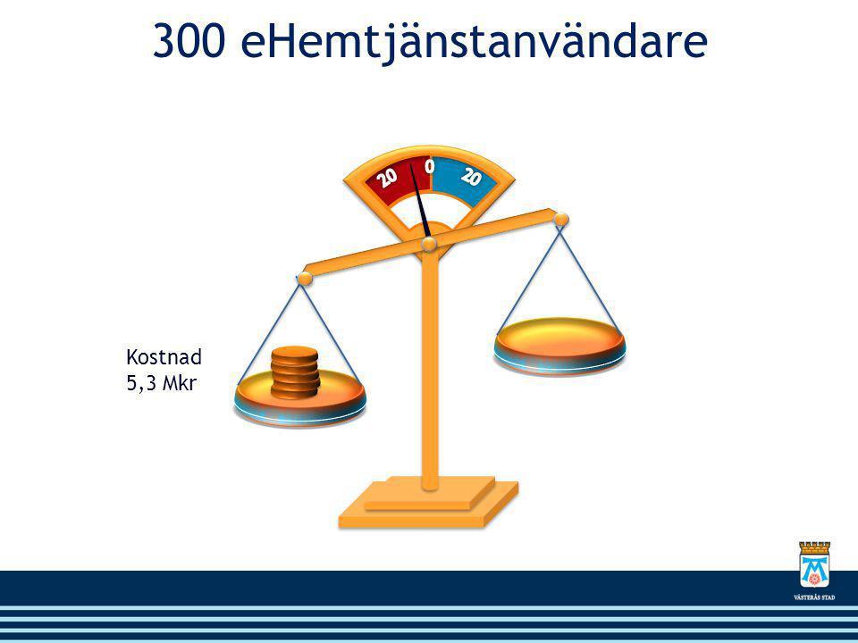 300 eHemtjänstanvändare 20 0 20 Kostnad 5,3 Mkr