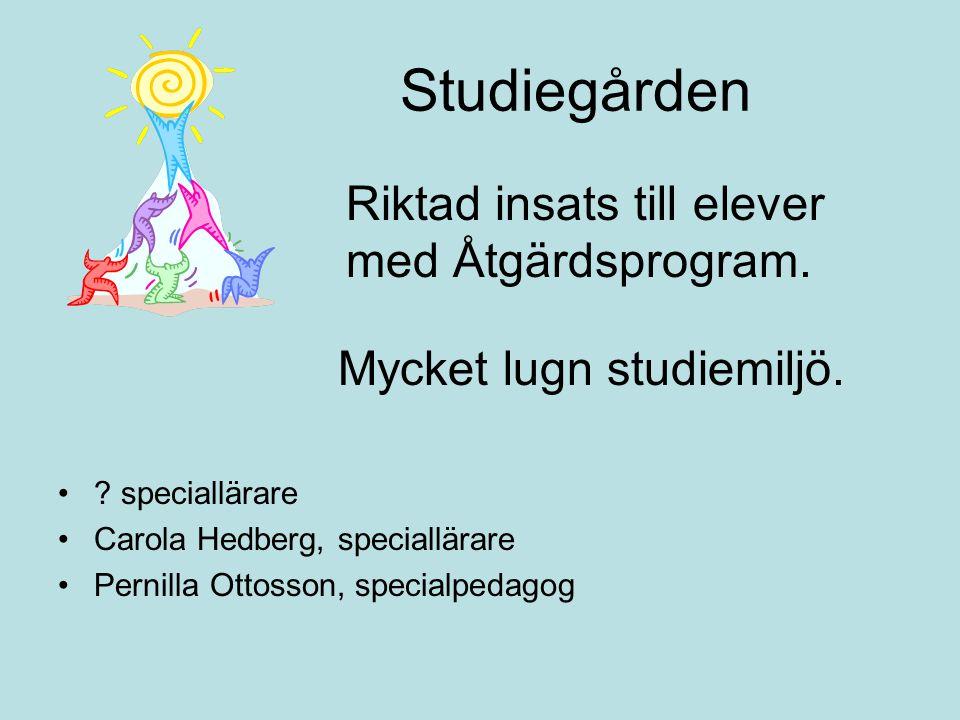Studiegården Riktad insats till elever med Åtgärdsprogram.