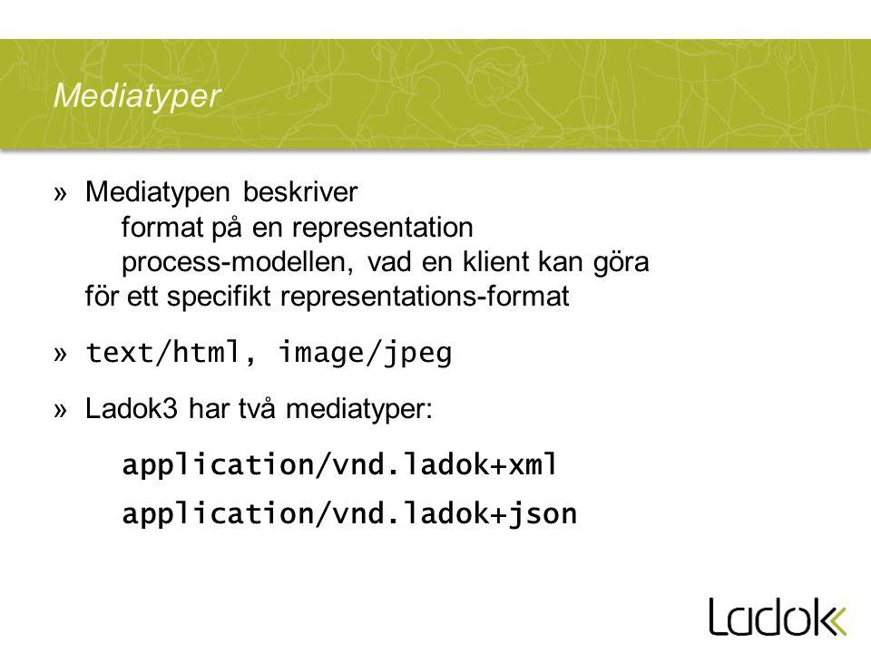 Mediatyper Mediatypen beskriver format på en representation process-modellen, vad en klient kan göra för ett specifikt representations-format.