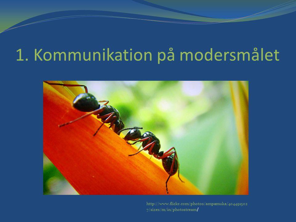 1. Kommunikation på modersmålet