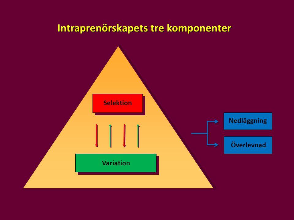Intraprenörskapets tre komponenter
