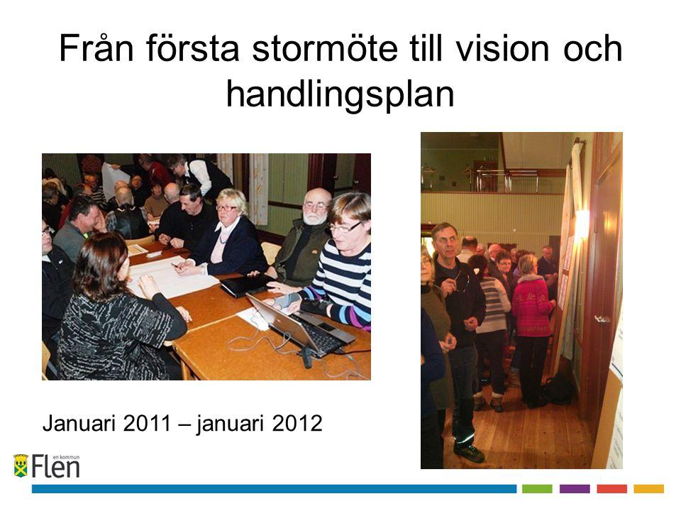 Från första stormöte till vision och handlingsplan