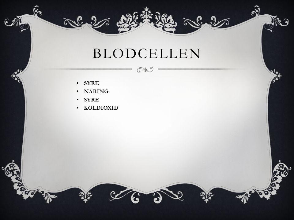 bloDcelLEN SYRE NÄRING KOLDIOXID