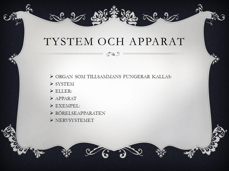 TYSTEM OCH APPARAT ORGAN SOM TILLSAMMANS FUNGERAR KALLAS: SYSTEM