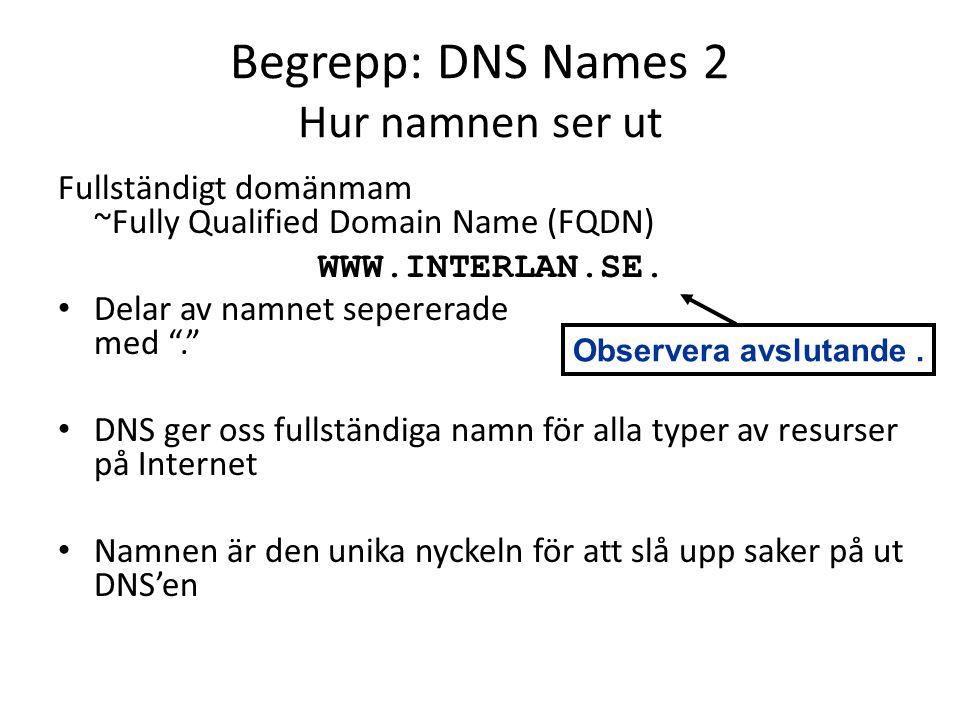 Begrepp: DNS Names 2 Hur namnen ser ut