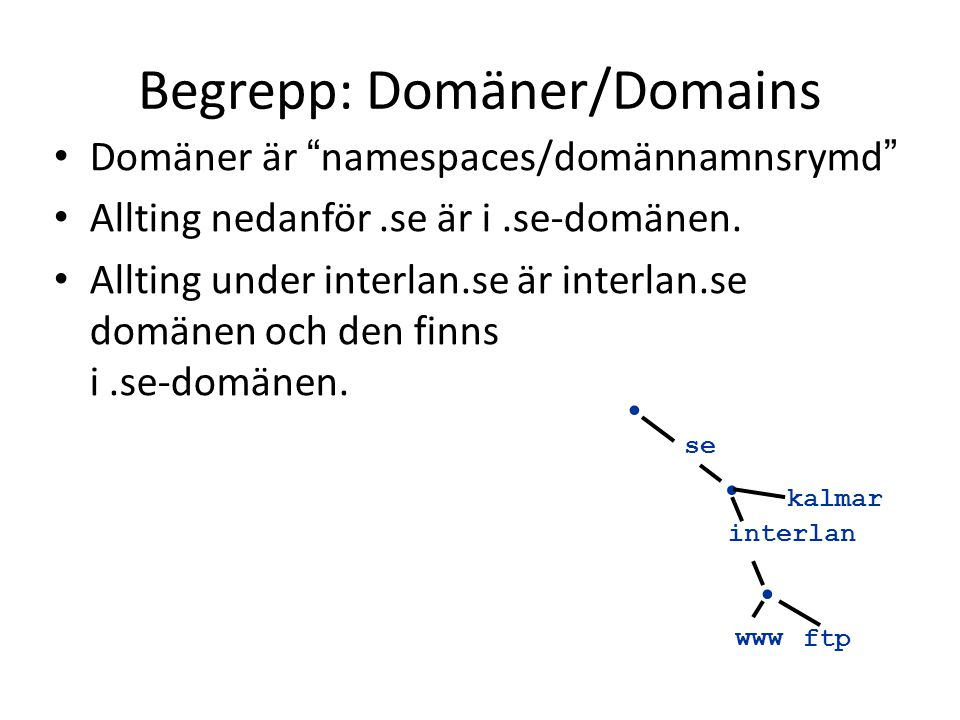 Begrepp: Domäner/Domains